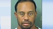 Tiger Woods was taken into custody at about 3am local time