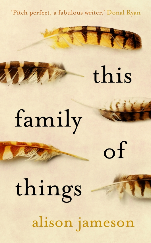 """Review: """"This Family of Things"""" by Alison Jameson"""