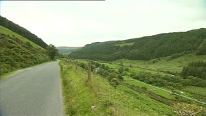 Search of the area in Wicklow is continuing