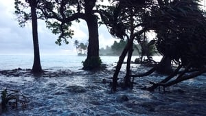 Flooding in the Marshall Islands in 2014 was blamed on climate change