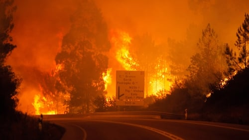 At least 57 dead in Portugal wildfires