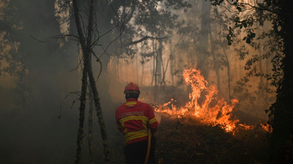 Portuguese Prime Minister described the fires as the 'biggest human tragedy in Portugal in living memory'