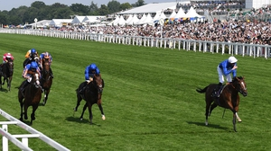 Barney Roy winning the St James' Palace Stakes