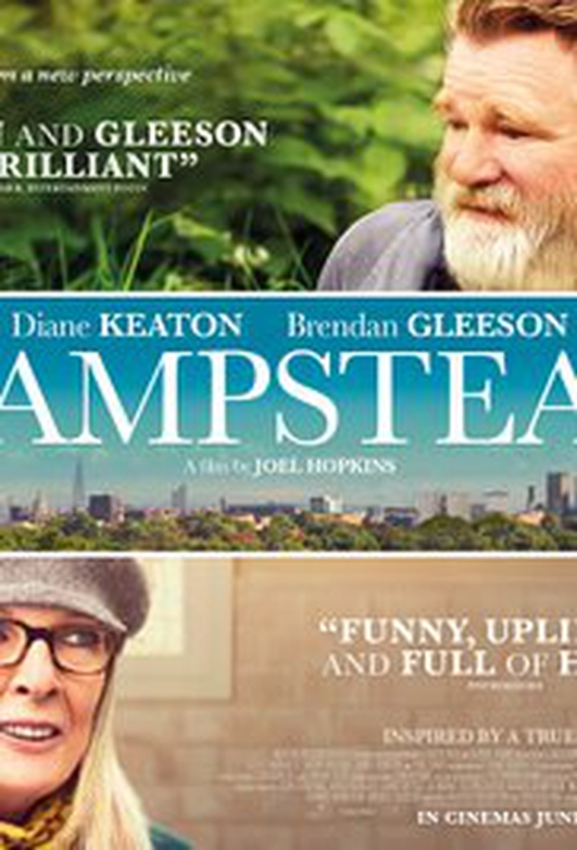 "Brendan Gleeson, star of ""Hampstead"""