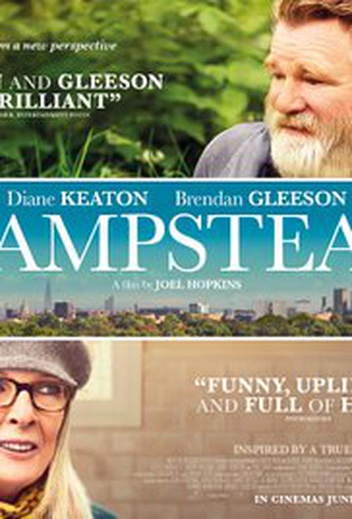 "Brendan Gleeson, star of ""Hampstead"""