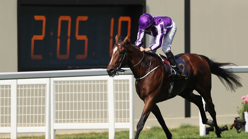 Highland Reel Bows Out With Hong Kong Victory