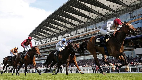 Royal Ascot is set to take place behind closed doors from 16 June