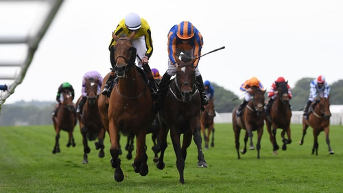 Big Orange (l) winning the Ascot Gold Cup