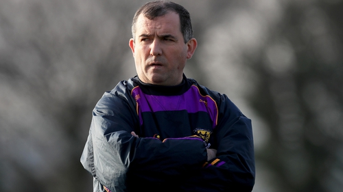 Seamus McEnaney lasted just one year in Wexford