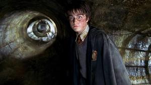 Daniel Radcliffe as the boy wizard