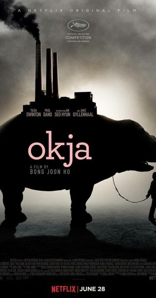 "Preview of ""Okja"" on Netflix"