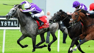 Capri (l) is among the Ballydoyle hopefuls for the Paris highlight