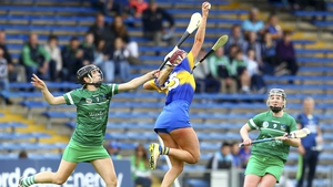 Mulcahy fired Limerick to two-point victory over Tipp in Thurles