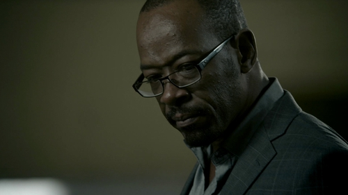 Lennie James as DCI Tony Gates