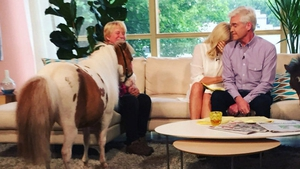 Monet the pony steals the show on This Morning