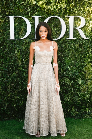 Model Winnie Harlow looks elegant and pristine in this nude tulle gown from Dior's SS17 line.