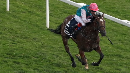 Enable is back in action this weekend