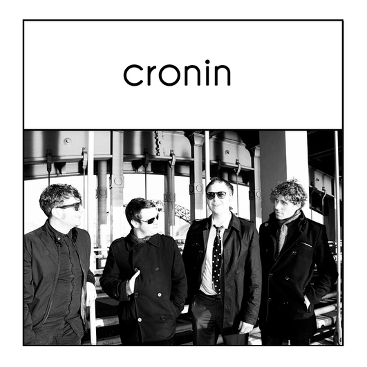 Cronin in session