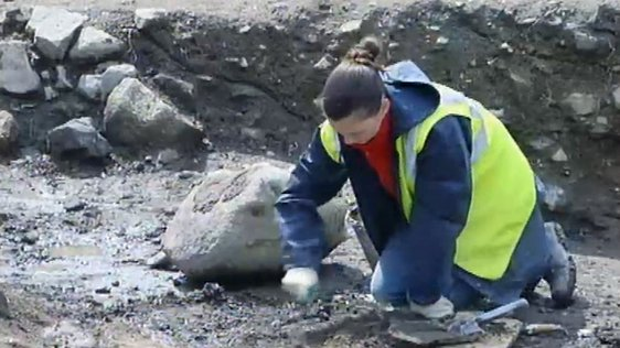 Medieval Castle Discovery in Carrickmines (2002)