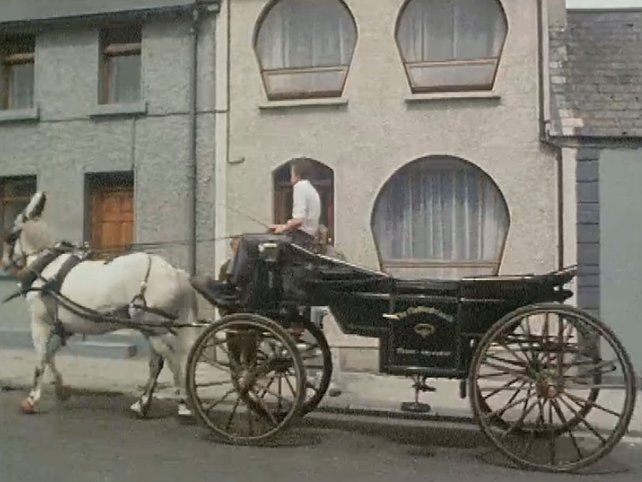 Horse House, Galway (1982)