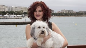Ashleigh Butler and Pudsey promoting Pudsey the Dog: The Movie during the Cannes Film Festival in May 2013