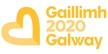 Niamh Ní Chonaill, Oibrí Deonach leis an Eagraíocht Gaillimh 2020.