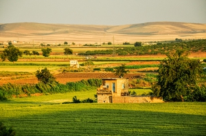 Green fields in western Syria, before the civil war started. Jakob Fischer / shutterstock