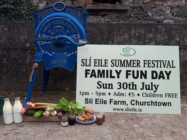 Summer festival Ireland sign