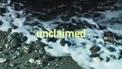 Unclaimed Irish Bodies