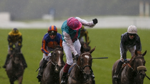 After winning both the Irish and English Oaks - Enable has now got the better of the colts