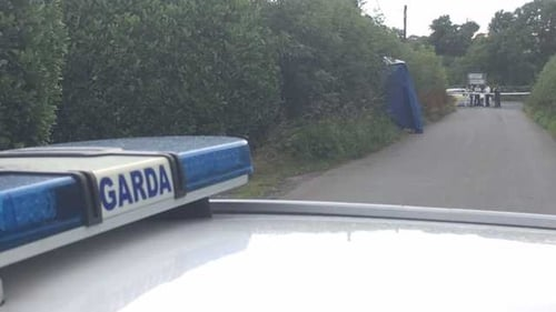 Gardai launch probe after body discovered at the Naul, north Dublin