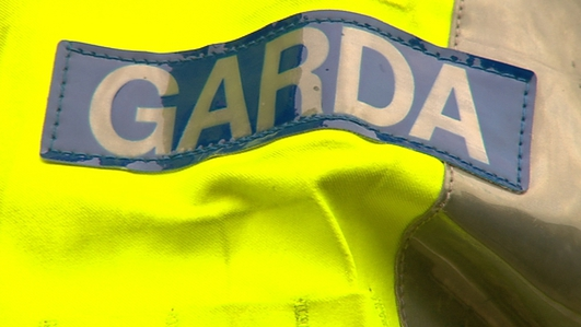 Garda Commissioner recruitment on the agenda as Cabinet meets