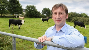 Westway CEO Dr Ruairi Friel said his company's 'innovative approach has been to find an alternative to antibiotics'
