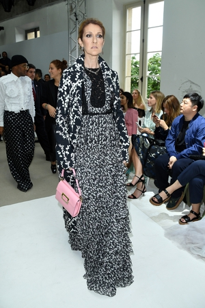 Celine Dion attended the Giambattista Valli Haute Couture show at Paris Fashion Week in 2016 wearing an incredible print dress and pink handbag. She is one glam lady.
