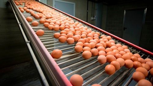 Egg production is down by as much as 15%, with alternative supplies having to be sourced outside the country