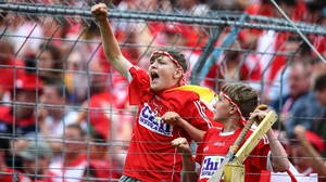 Young Cork supporters in full cry