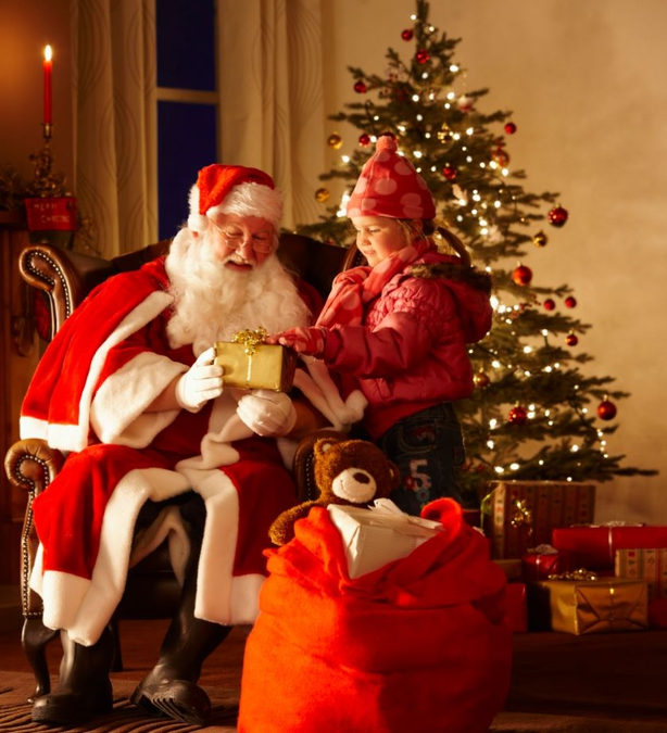 Visit Santa at Dublin Zoo