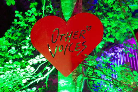 Other Voices Tonight