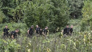 Search and rescue teams are searching the heavily-wooded area for signs of Maelys de Araujo
