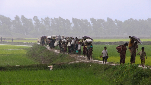 Rohingya refugees from Rakhine state in Myanmar walk along a path near Teknaf in Bangladesh