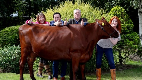 Ploughing Live is on Tuesday 19, Wednesday 20 and Thursday 21 September