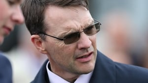 Aidan O'Brien has high hopes for Amedeo Modigliani's return