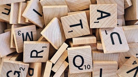 Linguistics Expert -  Professor Raymond Hickey