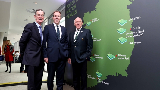 Ireland's Rugby World Cup Bid