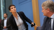 Frauke Petry's announcement caught her colleagues by surprise