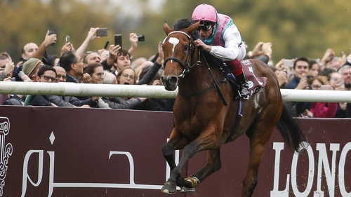 Enable and Frankie Dettori won the Arc