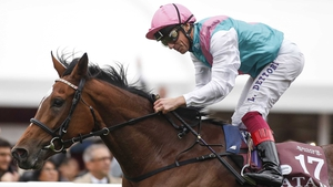 Enable set for her seasonal bow