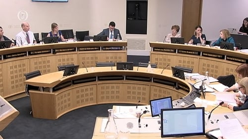 Committee has been hearing submissions on abortion services