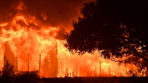 The main building at Paras Vinyards burns in the Mount Veeder area of Napa in California