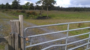 Apple first announced plans for the data centre at Derrydonnell Woods near Athenry in February 2015